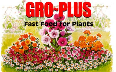 Gro~Plus – Fast Food for Plants